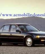 amply-honda-accord-maestro